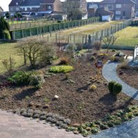 beplanting tuin